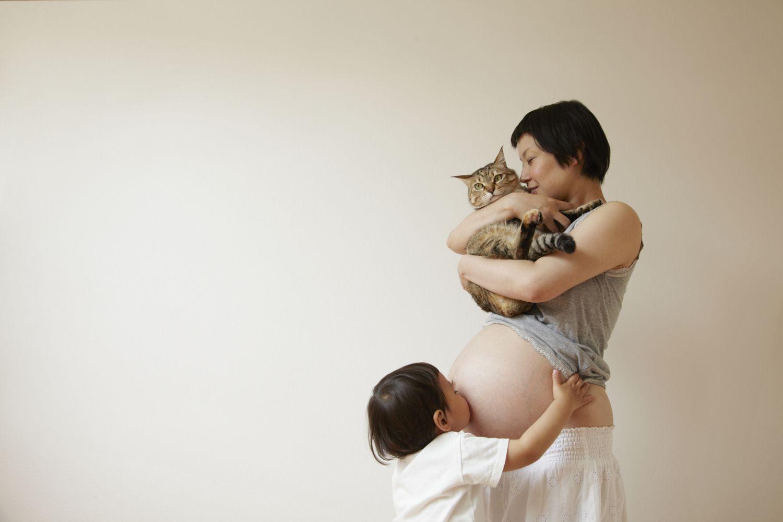 Toxoplasmosis: Riesgos en el embarazo