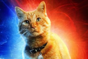 Goose, el gato de Capitana Marvel